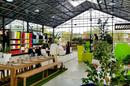 Innov'green vend du mobilier d'extérieur, de la décoration et des plantes.
