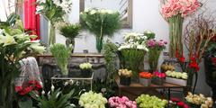 Fleuriste Perpignan pour mariages, pour offrir des bouquets de fleurs (® SAAM-Fabrice Chort)